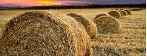 farm insurance broker victoria